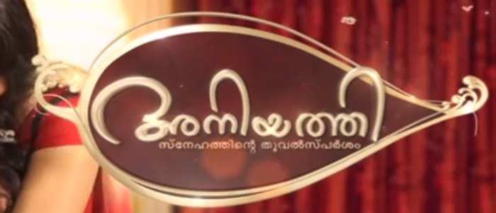 Mazhavil Manorama serial Aniyathi